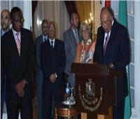 وزير الخارجية يؤكد على عمق العلاقات التاريخية بين مصر والأشقاء الأفارقة