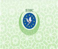 «استراتيجيات العمل التطوعي في مواجهة الإرهاب».. دورة بالمراكز الإسلامية بسويسرا