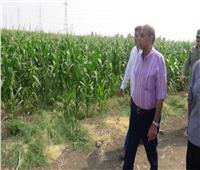 رئيس جامعة المنيا يجتمع بأعضاء مركز التجارب والبحوث الزراعية بــ«شوشة»
