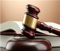 18 يونيو.. الحُكم على مُتهم بـ«الإضرار بالاقتصاد القومي»