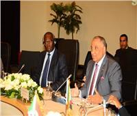 رئيس «الرقابة الإدارية»: جهود مكافحة الفساد في القارة الأفريقية تتشابه إلى حد كبير