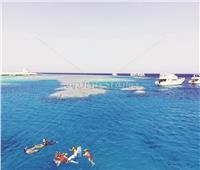 جزر البحر الأحمر.. كنوز الأجيال القادمة