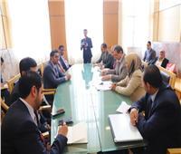 الهاملي : إنهاء مشاكل العمالة المصرية بالإمارات