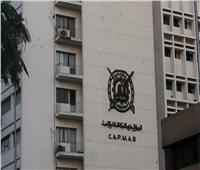 «التعبئة والإحصاء» يكشف إعداد زواج المصريين بالعرب خلال 5 سنوات