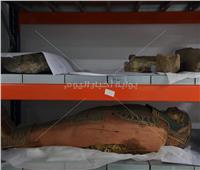 عرض «أقدم هيكل عظمي لشاب مصري» ضمن مقتنيات متحف الحضارة