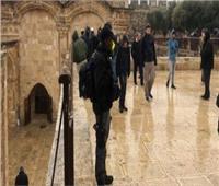 مستوطنون يقتحمون مبنى أثريًا في «السموع» تحت حماية الاحتلال الإسرائيلي