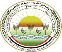 الزراعة تحيل 6 عاملين بالإصلاح الزراعي في بني سويف للنيابة
