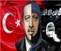 «الأحرار الدستوريين»: الشعب المصري يرفض تصريحات أردوغان السياسية