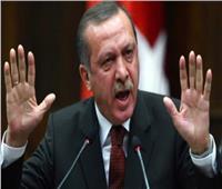 «حقوق الإنسان» بالبرلمان ترفض تصريحات الطاغية أردوغان