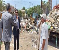 وفدان من مجلس الوزراء والتنمية المحلية يتفقدان الإهمال في المحلة