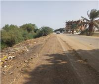 إزالة 19 حالة تعد على مجرى نهر النيل بقرية البرجاية بالمنيا