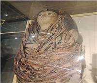 ننشر الصور الأخيرة للمومياوات قبل نقلها من التحرير إلى المتحف الكبير