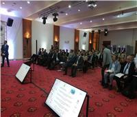 «الزراعة»: المجلس الدولي للزيتون المحرك الرئيسي لمعالجة تحديات القطاع