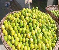 فيديو| «التموين» تكشف سر ارتفاع سعر الليمون