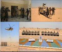 فيديو| «القوات الخاصة» من مصر وتوجو تنفذان عملية ناجحة لاقتحام بؤرة إرهابية