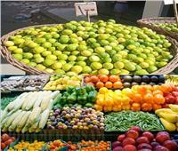 الزراعة: مصر الأول عالميا في حجم الصادرات.. وسعر الليمون سينخفض 70% قريباً