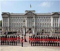 الفئران تغزو قصر باكينغهام وتسبب الذعر للملكة إليزابيث