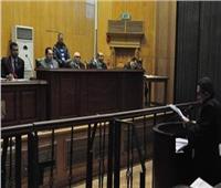 الثلاثاء| الحكم على متهم في إعادة محاكمته بـ«التجمهر والتظاهر»
