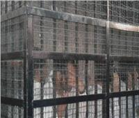 الثلاثاء| الحكم على 15 متهمًا بانتحال صفة ضباط شرطة