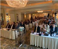 «الغرفة التجارية العربية البرازيلية» تناقش تعزيز التعاون التجاري مع مصر