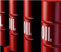 «البترول» تستعرض مع المؤسسة الكويتية عقدين لتوريد زيت خام لتكريره بمصر