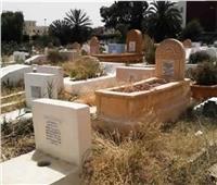 ما حكم وضع الزرع عند القبور؟.. «البحوث الإسلامية» يجيب