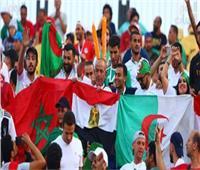 جماهير مصر تساند المنتخب الجزائري أمام غينيا في كأس أمم إفريقيا