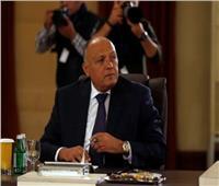 وزير الخارجية يؤكد أهمية توفير الرعاية اللازمة للمصريين في الخارج