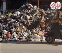 خبر في صورة| القليوبية تطلق «أبلكيشن» لحل القمامة.. والنتيجة «تلال زبالة»