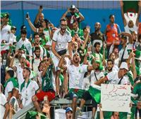 أمم إفريقيا 2019| استعدادات خاصة باستاد السويس لاستقبال جماهير الجزائر