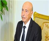 البرلمان الليبى: حاسبوا المقصرين في تفجير مقبرة الهواري