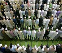 ما حكم تسوية الصفوف في الصلاة؟| «الإفتاء» تجيب