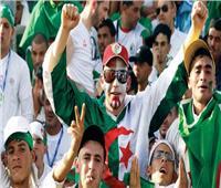 أمم إفريقيا 2019| الجماهير الجزائرية لأول مرة في ستاد القاهرة غدا