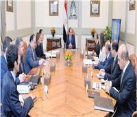 السيسي:المؤشرات الإيجابية للاقتصاد تحققت بفضل وعي وصبر المصريين