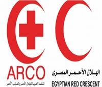 «الهلال الأحمر» و«يونيسيف» يطلقان مشروعات تنموية في شمال سيناء