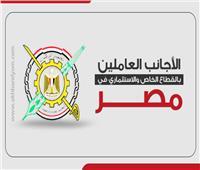 إنفوجراف| 9.7 ٪ ارتفاع عدد الأجانب العاملين بالقطاع الخاص والاستثماري في مصر