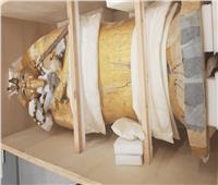 بدء أعمال ترميم التابوت الذهبي للملك توت عنخ آمون بالمتحف الكبير