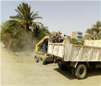 رفع 165 طنا من القمامة والمخلفات الصلبة بمركز أبوقرقاص في المنيا