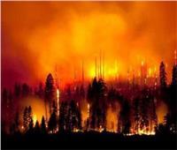 «هيئة الإطفاء»: إضرام النار المتعمد والإهمال وراء حرائق الغابات في اليونان