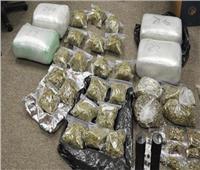 ضبط 45 طربة حشيش و3 تجار مخدرات بالإسكندرية
