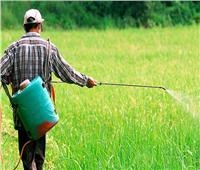 «البحوث الزراعية» تنتج وتوزع مبيد حيوي يساهم في مكافحة الآفات