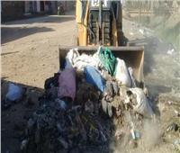 رفع 178 طناً من القمامة والمخلفات الصلبة بمركز أبوقرقاص بالمنيا