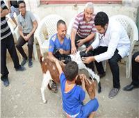 جامعة سوهاج تطلق قافلة طبية وبيطرية مجانًا