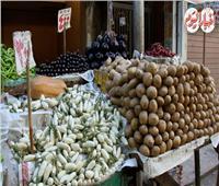 انخفاض أسعار الخضار.. وسعر الليمون مفاجأة |فيديو