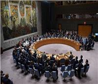 فنزويلا تطالب مجلس الأمن بالرد على تهديدات «ترامب»
