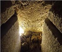 الانتهاء من فك جدران مقبرة «توتو» لنقلها إلى متحف العاصمة الإدارية