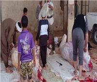 «بيطري شمال سيناء»: فتح المجازر مجانًا في عيد الأضحى