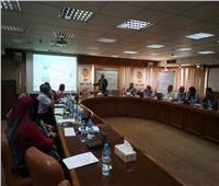 استمرار ورش عمل مشروع «تسريع الاستجابة المحلية للقضية السكانية»