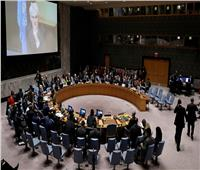 مجلس الأمن مُدينًا هجوم معهد الأورام: يجب مُحاسبة ممولي ورعاة الإرهاب