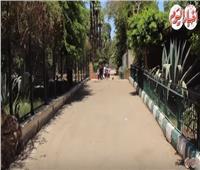 فيديو| حديقة الحيوان تتزين استعدادا لـ«عيد الأضحى 2019»